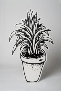 plante_verte